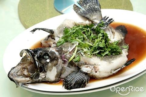 steam grouper, hong kong, malaysia, kl, pang's kitchen, michelin restaurant, taman desa, pang's kitchen